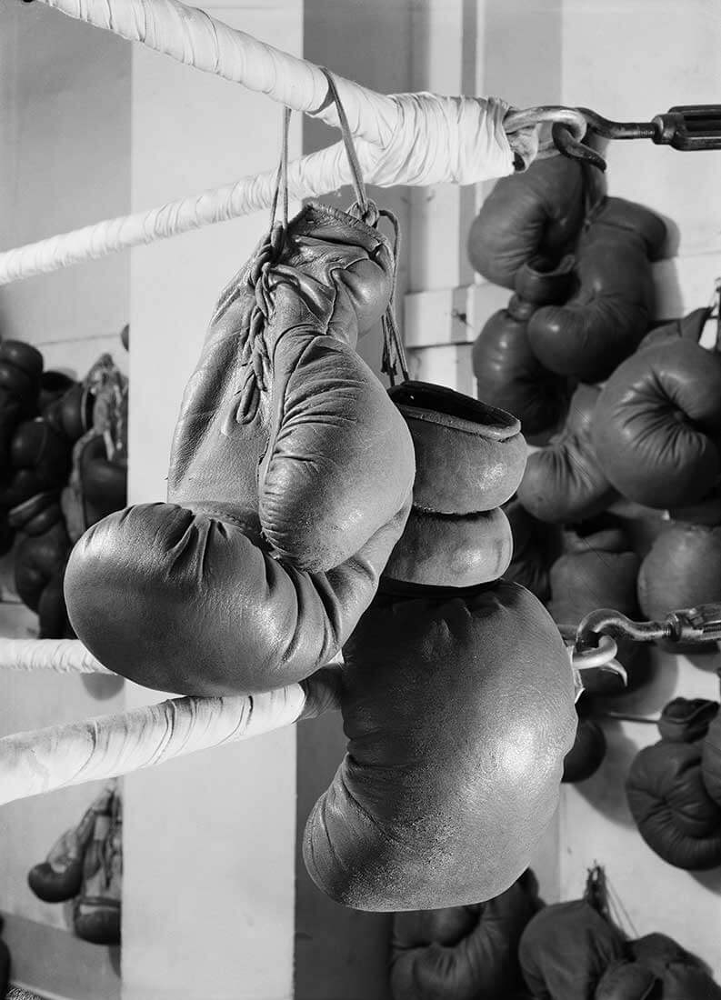 La boxe, projet d'illustration pour