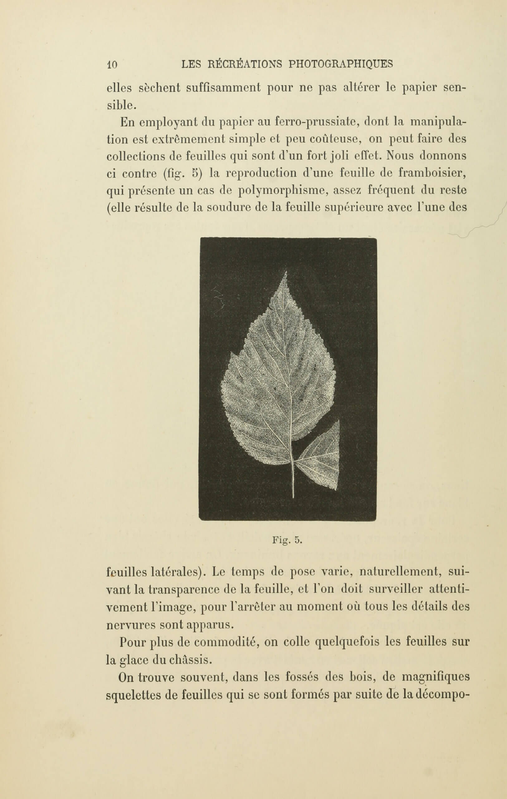 Albert Bergeret et Félix Drouin, «Reproductions directes». <em>Les Récréations photographiques</em>, Paris, Charles Mendel, 1891, p. 10 (Boston Public Library)
